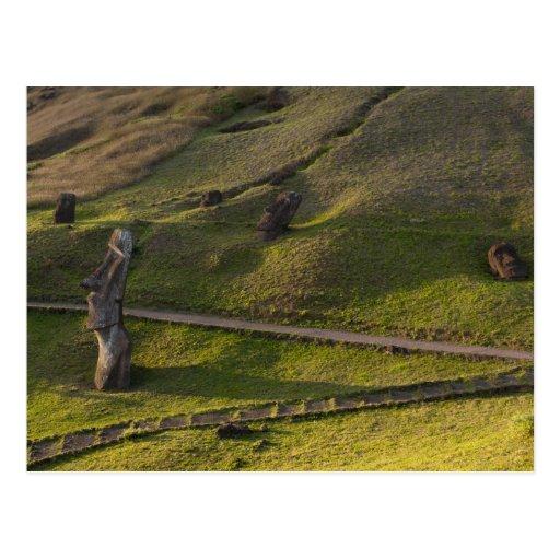 Rano Raraku, Rapa Nui, isla de pascua, Chile Tarjetas Postales