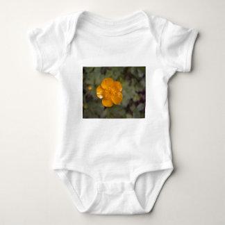 Ranúnculo anaranjado 1 body para bebé
