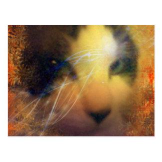 raqueta por completo del gatito del calor postal