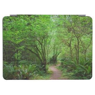 Rastro en bosque de la secoya cubierta de iPad air