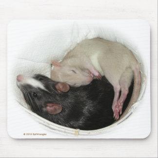 Rata del bebé el dormir alfombrilla de ratón