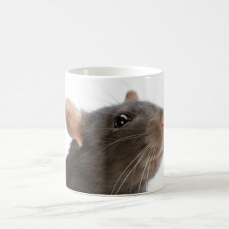 ¡Ratas!!! Taza De Café