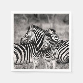Rayas blancos y negros del safari de la naturaleza servilleta de papel