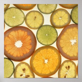 Rebanadas de la fruta cítrica impresiones
