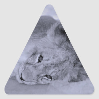 Reclinación adorable del cachorro de león pegatina triangular