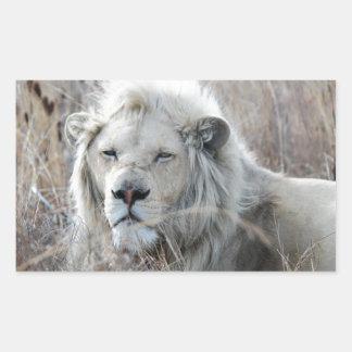 Reclinación blanca africana del león pegatina rectangular
