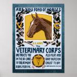 Reclutamiento veterinario del ejército del cuerpo  posters