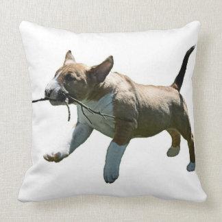 Recogida de la almohada de tiro de bull terrier