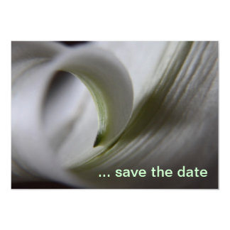 Recordatorio blanco de Lilly (ahorre la fecha) Invitación 12,7 X 17,8 Cm