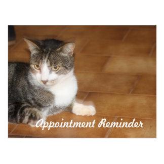 Recordatorio de la cita del gato postal