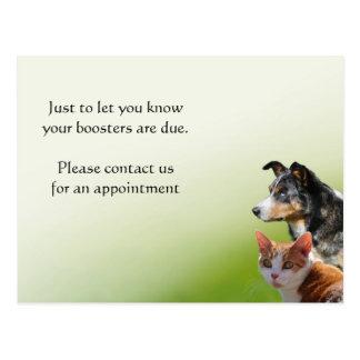 Recordatorio de la vacunación del veterinario del postal