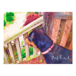 Recordatorio del veterinario de los mejores amigos postal