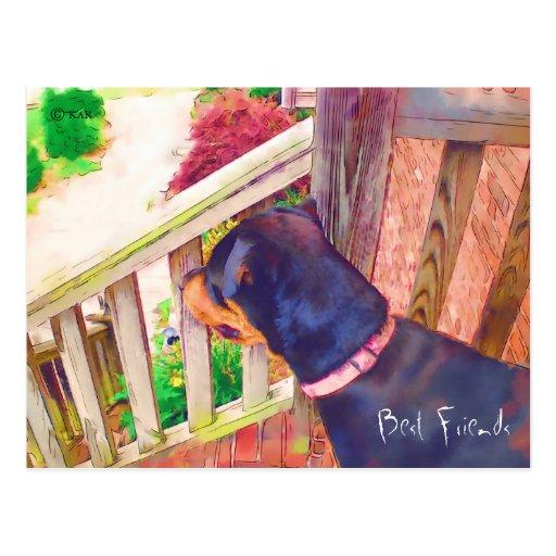 Recordatorio del veterinario de los mejores amigos tarjetas postales