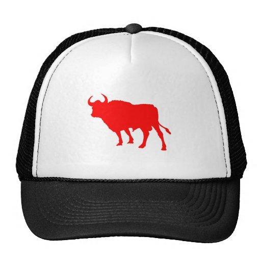 Red Bull Gorras