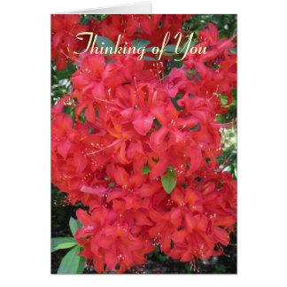 redflowerblossoms, pensando en usted tarjeta de felicitación