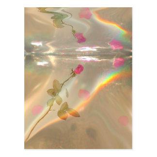 Reflexión color de rosa postal