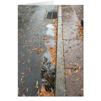 Reflexión de Rainwashed, tarjeta