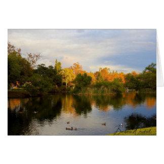 Reflexión hermosa del otoño en una tarjeta