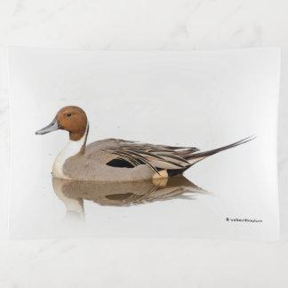 Reflexiones de un pato del pato rojizo