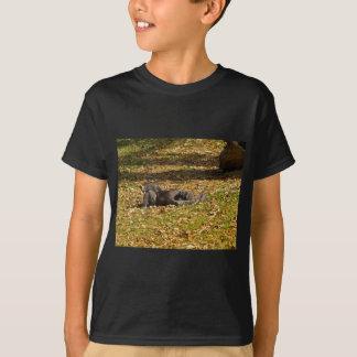 Refrigeración hacia fuera en el parque zoológico camiseta