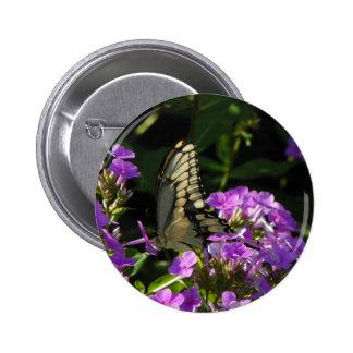 Regalo de la foto de la mariposa chapa redonda de 5 cm