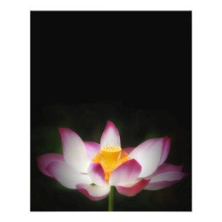 ¡Regalo de OM de la yoga de la fotografía de la fl Folleto 11,4 X 14,2 Cm