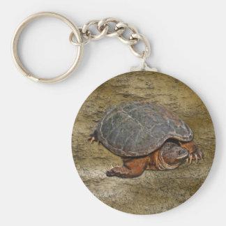 Regalo del Tortuga-amante de la tortuga de rotura Llavero Redondo Tipo Chapa