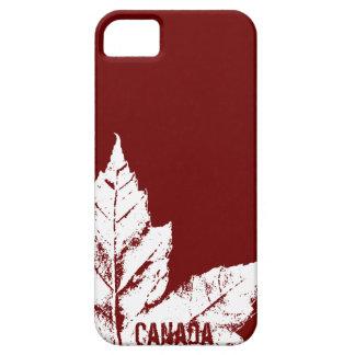 Regalo fresco de la hoja de arce de Canadá del iPhone 5 Protectores