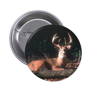 Regalo popular del dólar de los ciervos de Whiteta Pins