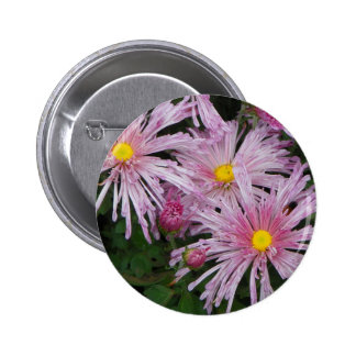 Regalo rosado de la foto de la flor chapa redonda de 5 cm