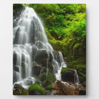 Regalos de la cascada del bosque de la naturaleza placa expositora