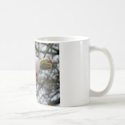 Regalos del día de madres 19 flores de la magnolia taza