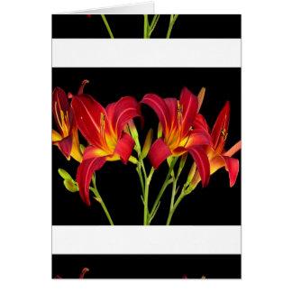 Regalos sensuales románticos de la flor exótica de tarjeta de felicitación