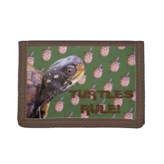 ¡Regla de las tortugas!
