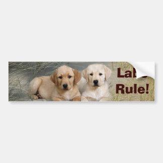 Regla de los perritos de la pegatina para el parac pegatina de parachoque