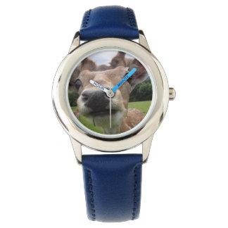 rehuhr relojes de pulsera