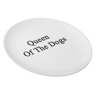 Reina de los perros platos para fiestas