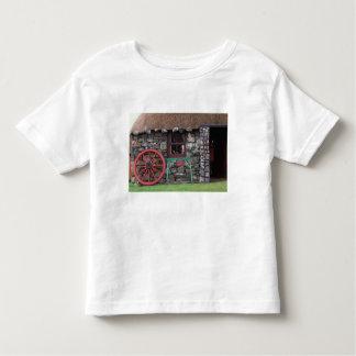 Reino Unido, Escocia, isla de Skye, piedra Camiseta