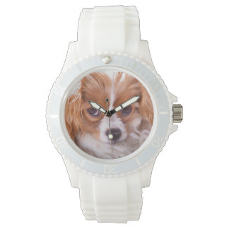 Reloj arrogante de rey Charles Puppy