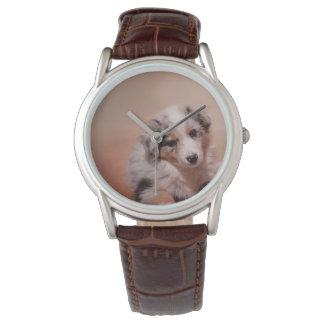 Reloj Australian shepherd puppy