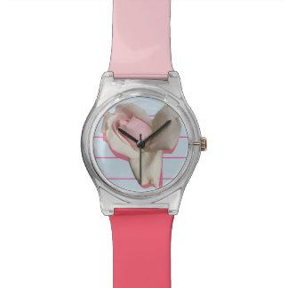 Reloj con el fondo color de rosa y azul rosado