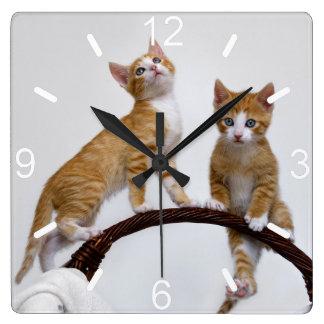 Reloj Cuadrado Amante divertido del gato de la foto del gimnasio