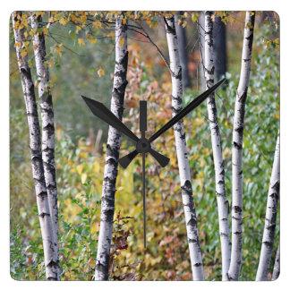 Reloj Cuadrado Árboles de abedul