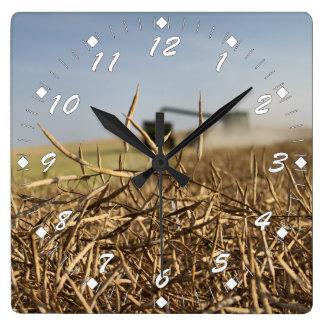 Reloj Cuadrado Cosecha de Canola