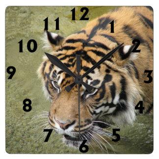Reloj cuadrado del tigre