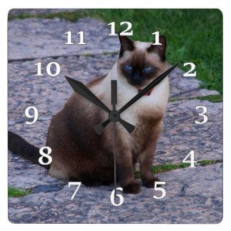 Reloj Cuadrado Gato siamés