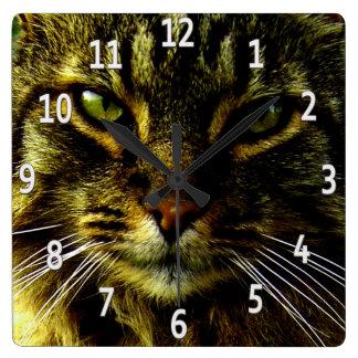 Reloj Cuadrado Ojos de gato que hipnotizan la foto enmarcada