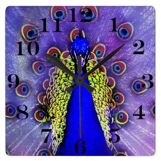 Reloj Cuadrado Pájaro en colores pastel del azul de pavo real