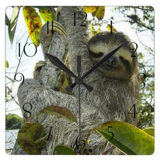 Reloj Cuadrado Pereza encima de un árbol