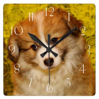 Reloj Cuadrado Perrito del corgi galés del Pembroke
